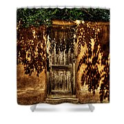 Shadowed Door Shower Curtain