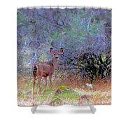 Shasta County Deer  Shower Curtain