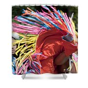 Shawl Dancer Shower Curtain