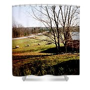 Sheep Farm Shower Curtain