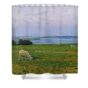 Sheep Grazing Shower Curtain
