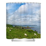 Sheep On A Hill Shower Curtain