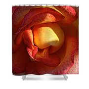 Sheila's Perfume Shower Curtain