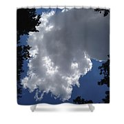Shelby Township Shower Curtain
