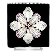 Shell Art 2 Shower Curtain
