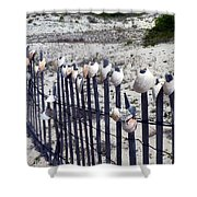 Shell-decorated Fence Shower Curtain