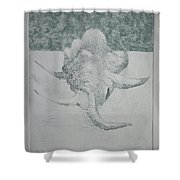 Shell Landscape Shower Curtain