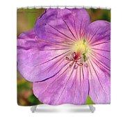 Shimmer Flower Shower Curtain