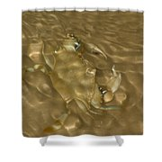 Shimmering Crab Shower Curtain