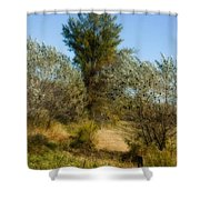 Shimmering Leaves Shower Curtain