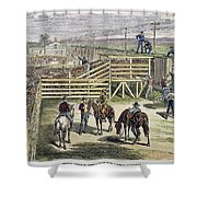 Shipping Cattle, 1877 Shower Curtain