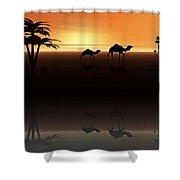 Ships Of The Desert Shower Curtain