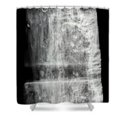 Shipworms Shower Curtain by Ted Kinsman