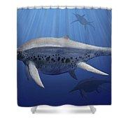 Shonisaurus Popularis Swimming Shower Curtain