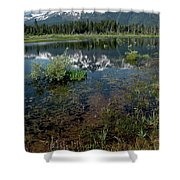 Shore Reflections Of Mt Tallac Shower Curtain