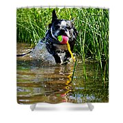 Shoreline Conditioning Shower Curtain