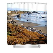 Shores Of Oregon Shower Curtain