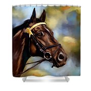 Show Horse Painting Shower Curtain