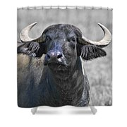 Show Of Strength Shower Curtain