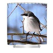 Shrike - Lonely Shower Curtain