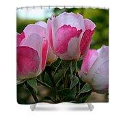 Shrub Roses Shower Curtain