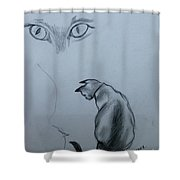 Siamese Cat Study Shower Curtain