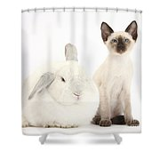 Siamese Kitten And White Rabbit Shower Curtain