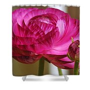 Side View Of A Blossom  Shower Curtain