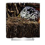 Sign's Of Fall Shower Curtain