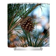 Signs Of Fall Shower Curtain