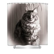 Silent Moment Shower Curtain
