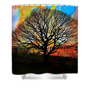 Silhouette In Winter Shower Curtain