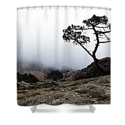 Silhouette Of Tree In Mist Shower Curtain