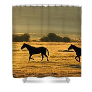Silhouetted Horses Running Shower Curtain