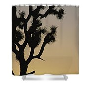 Silhouetted Joshua Tree In Antelope Shower Curtain