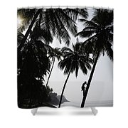 Silhouetted Man Climbing A Palm Tree To Shower Curtain
