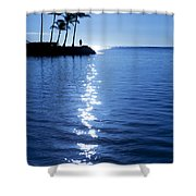 Silhouetted Plams IIi Shower Curtain
