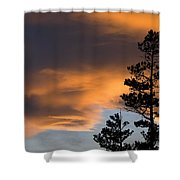 Silhouetted Tree At Sunset Shower Curtain