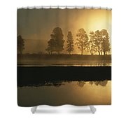 Silhouetted Trees Along The Yellowstone Shower Curtain