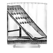 Silk: Moth Catching Shower Curtain