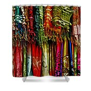 Silk Dresses In Vietnam Shower Curtain