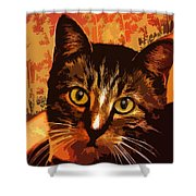 Silly Cat Shower Curtain