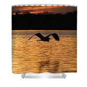 Silouette On The Lake Shower Curtain