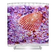 Silver Bells And Cockle Shells . . . Shower Curtain