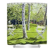 Silver Birches Shower Curtain by Lucy Willis
