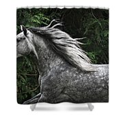 Silver Dapple Shower Curtain