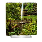 Silver Falls Bridge Shower Curtain