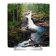 Silver Falls Full View  Shower Curtain