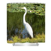 Silver Heron Shower Curtain