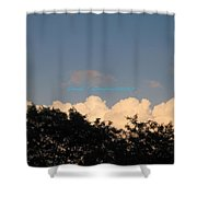 Silver Layer Shower Curtain